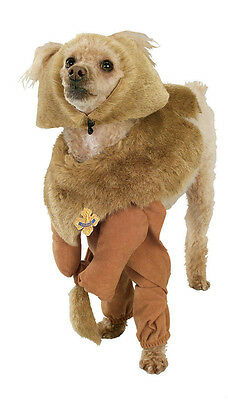 Rubies Costume Wizard of Oz Cowardly Lion Pet Costume Size Small