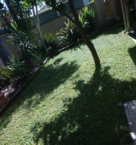 Soft & silk synthetic grass is here Sandringham Bayside Area Preview