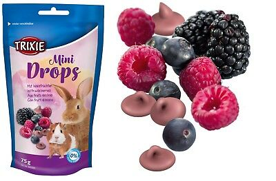 Wild Ferret Food (Mini Fruit Drops with Wild Berries Small Animal Hamster Guinea Pig Rabbit 75g )