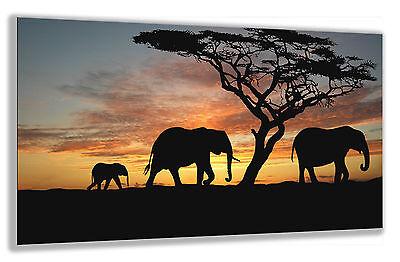 "Large Wall Art Canvas Print of Elephant Sunset Framed 20""x30"""