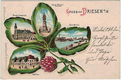 Gruss aus Driesen Neumark, Color-Litho (Kleeblatt) gelaufen 1901 -08213-