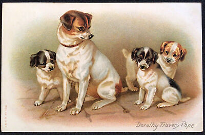 Dog with Puppies signed Dorothy Travers Pope Vintage Postcard