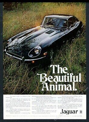 1971 Jaguar XKE XK-E coupe black car color photo vintage print ad