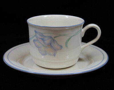 (Lenox Chinastone Microwave and Oven Safe Sky Blue Wildflowers Cup and Saucer Set)