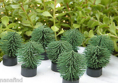 Miniature Dollhouse FAIRY GARDEN ~ Set of 8 Mini Landscape Bushes ~ NEW