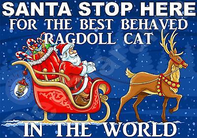 SANTA STOP HERE FOR BEST BEHAVED RAGDOLL CAT IN THE WORLD Laminated