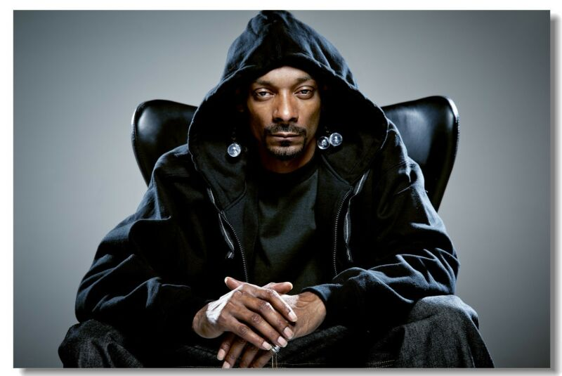 Poster Snoop Doggy Dogg Lion Pop Singer Wall Club Room Cloth Print 208