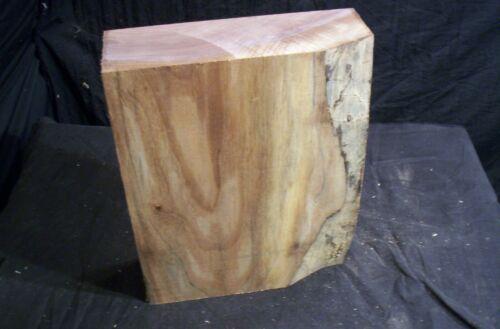 "Large Dry Walnut Carving or Lathe Turning Blank 3 x 9 x 12"" Craft Lumber"