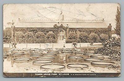 Tower Grove Park St  Louis Missouri Rppc Beautiful Lily Pond Rare Antique Photo