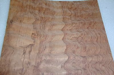 Waterfall Bubinga Figured Quilted Wood Veneer 9 X 8 On Paper Backer 140th