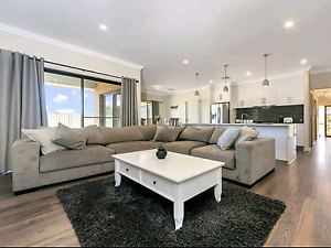 Suede corner lounge suite Gawler Gawler Area Preview