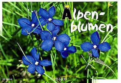 Postkartenbuch Alpenblumen 30 Postkarten Blumen — B-Ware