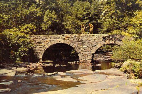 NY Narrowsburg TEN MILE RIVER BRIDGE Boy Scouts of America 1950s  6x9 postcard
