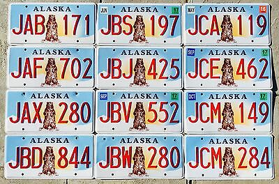 Alaska License Plate - Standing Bear - PREMIUM - Pick Your Plate