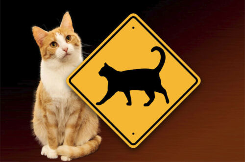 CAT CROSSING - Pet Safety Sign - Metal Warning Placard - Fun Kitty Cat Decor