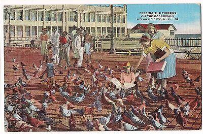 Feeding the PIGEONS ATLANTIC CITY NJ Vintage Linen Postcard Boardwalk Birds