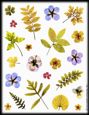 Vintage Hallmark Pressed Leaves Flowers Pansies Stickers Sheet