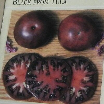 - Heirloom Russian Tomato BLACK FROM TULA❋100 Seeds❋LARGE FRUITS Rich Smoky Flavor