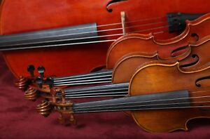 Melbourne String Performers - for weddings & all other occasions