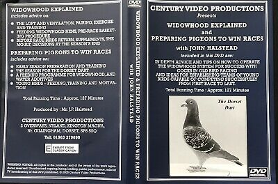 Widowhood Explained  Racing Pigeon Dvd With John Halstead