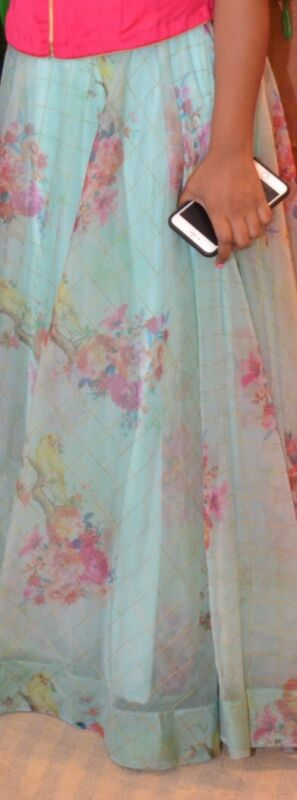 Organza Long Skirt