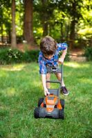 Spring Cleanups & Summer lawn maintenance