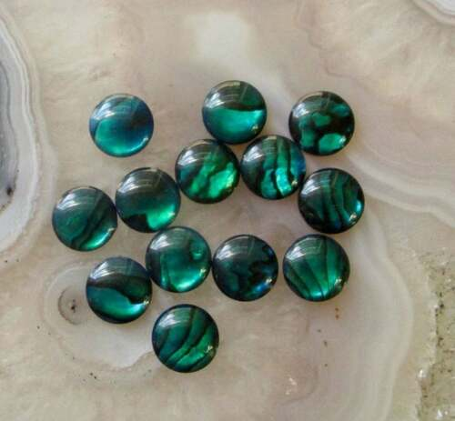 Natural Blue Green Abalone Shell Cabochon 8mm Round Doublet, 10 Cabochons
