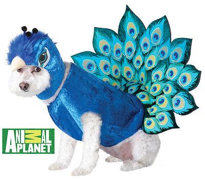 Animal Planet Peacock Dog Pet Costume