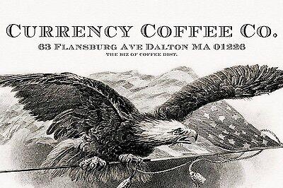thebizofcoffee