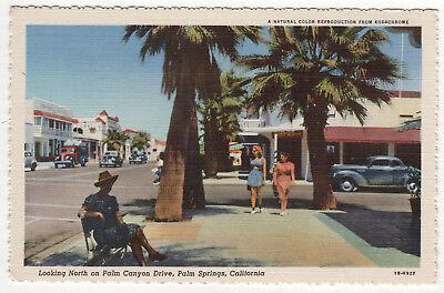 PALM SPRINGS CALIFORNIA PC Postcard PALM CANYON DRIVE Stephen Willard CALI CA