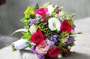 Florist for sale Tewantin Noosa Area Preview