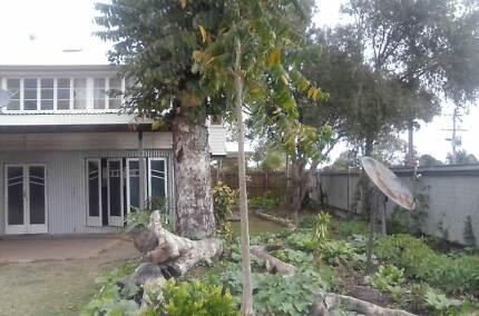 Accommodation TableLands North Queensland: Medium Term Mareeba Tablelands Preview