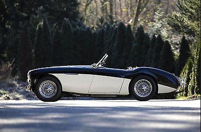 "1955 Austin Healey 100 BN1 ""LE MANS""  1955 AUSTIN-HEALEY 100 BN1 ""LE MANS white convertible"