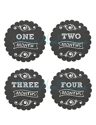 Monthly Baby Stickers Milestone Bodysuit New Baby Shower GIFT Month Photo Prop