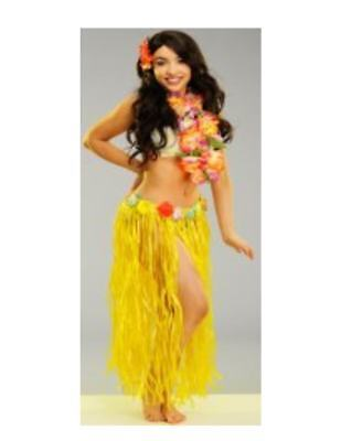 3 pc Kit PLASTIC ADULT HULA SKIRT & BRA Hawaiian Luau Beach Party Supply  - Luau Gift Bags