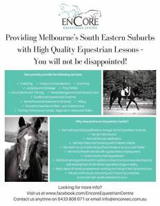 Horse Riding Lessons Groups and privates Dingley Village Kingston Area Preview
