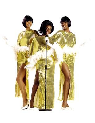 60's - 70's Motown Diva Dream Girls Singers 2 pc Gold Sequin Adult Costumes - Motown Costumes