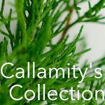 Callamity's Collection