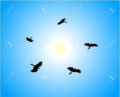 Five Eagles