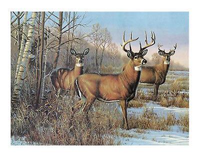 Deer- 3D Lenticular Poster - 12 x16 Print