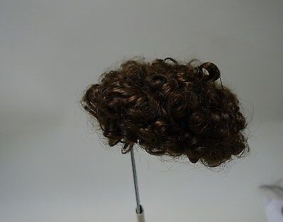 Doll wig tight Afro style curls dark brown for size 9