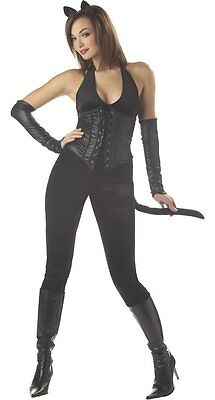 Womens Feline Femme Fatale Sexy Villian Catsuit Sexy Catwoman Medium Kitty Adult