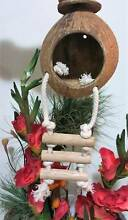 Coconut bird houses handmade with ladders Mascot Rockdale Area Preview
