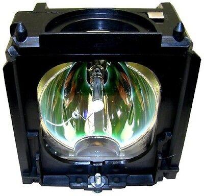 Electrified Samsung Bp61-01195a Bp6101195a Lamp In Housin...
