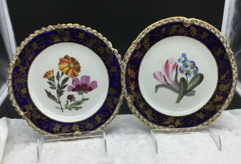 2 Antique Hand Painted Botanical Coalport Worcester Cobalt Blue Gold Plates Pair