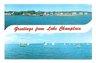 Greetings From Lake Champlain Postcard Queen City Vermont Regatta Sail Boats