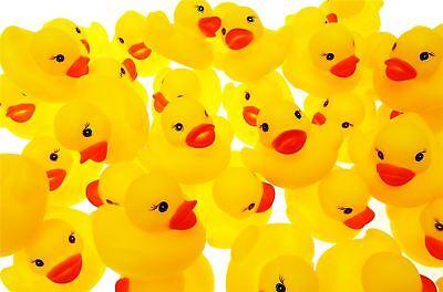 45 x Mini Rubber Ducks Kids Baby Bath Water Bathtime Play Toy High Quality Bulk