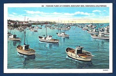 Fishing Fleet At Anchor  Monterey Bay  Monterey  California