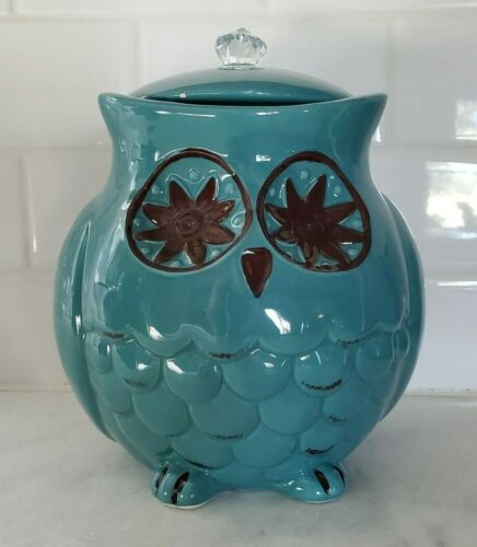 Pier One Starry Night Owl Canister Teal Green
