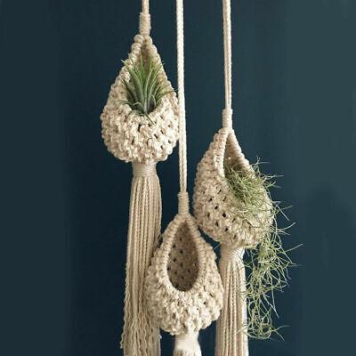 1x Macrame Air Plant Hanger Tillandsias Hanging Basket Rope Holder Home Decor US